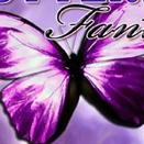 Поиск бабочек