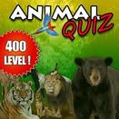 Викторина с животными (Animal Quiz)