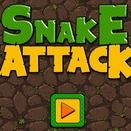 Атака Змеи