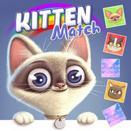 Игра Совпадения картинок с кошками