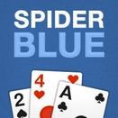 Паук на голубом фоне